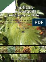 Briófitas de los bosques templados de Chile