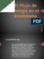 El Flujo de Energía en el Ecosistema