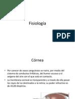 Fisiología ojo