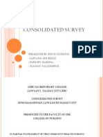 Consolidated Survey Ppt