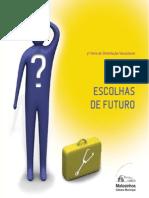Escolhas de Futuro