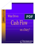 What Drives Cashflow on a Dairy