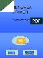 48243123-Amenore-primer.ppt