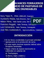 Avanves Forrajeros en Manejo de Sabanas Inundables