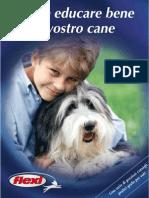 Brochure Education