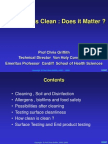 How Clean is Clean DubaiHandout