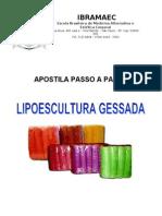 Apostila_Lipogessada_completa
