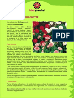 MargheritaPomponette.pdf