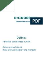 Rhinorea