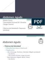 abdomenagudo-obstruccinintestinaleisquemiaintestinal-110325191843-phpapp01
