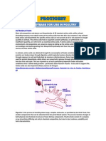 protease for use in poultry