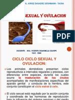 Ciclo_Sex..[1]