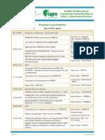 00_Programa_Seminario CIGRE_Gen Eólica_2011.pdf