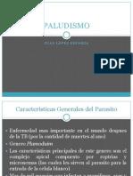 4.Plasmodium