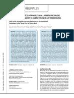 Estudio de Los Costos Intangibles y de La Participacion Del Componente Familiar en El Costo Social de La Tuberculosis L Gusmano Et Al 2009