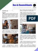 Nos Trilhos do Desenvolvimento - Ano 1 - nº 8