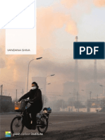 Outsourcing Pollution and Energy-Intensive Production – Vandana Shiva