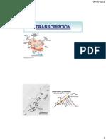 Clase 9-transcripcion.pdf