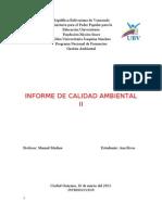 Informe de Calidad Ambiental III