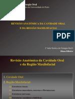 Aula Anatomia Cir Oral I 2006-07