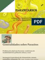 PARASITOS GUILLO