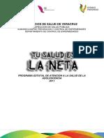 Plan Estatal de Trabajo Adolescencia 2011