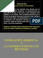 gestion ambiental 19300