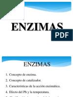 1 enzimas