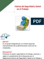 169941664 Comites Paritarios de Seguridad y Salud en El Trabajo