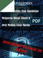 Seguridad en Base de Datos