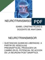 Neurotransmisores Hoy