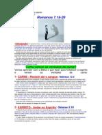 alutaentreacarneeoesprito-120803133252-phpapp01.docx