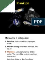018 Plankton