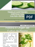 Horticultura-Cultivo El Pepino