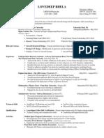 bhela resume