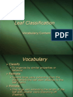 Leaf Classification Vocab