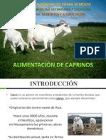 Alimentación de cabras (alimentos y alimentación)