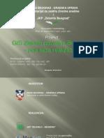 GIS Zelenih Povrsina  Beograda
