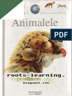 Encyclopaedia Animals