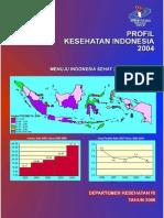 Profil Kesehatan Indonesia 2004