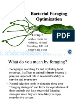 Bacterial Foraging Optimization