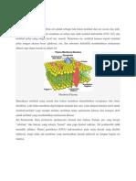 materi farmakologi.docx