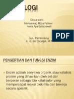 PPT Enzimologi