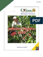 Informe_DT-2010_COFENAC.pdf