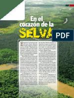 En El Corazon de La Selva