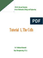 cell tutorial