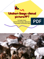 Dhakeri-Bange Clinical Picture