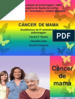 Campanha Outubro Rosa Psf Praeiro