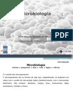 Microbiologia - Fermentação