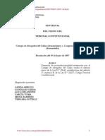STC 00007-2007-PI. Modificacion Del CPConst.